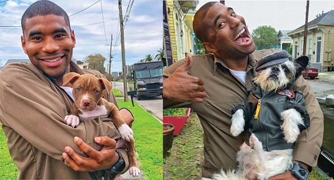 dogs dog photos driver UPS - 8060165