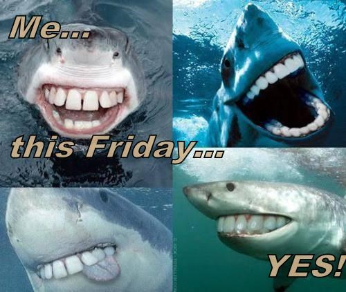 smiling teeth sharks weird - 8060611072