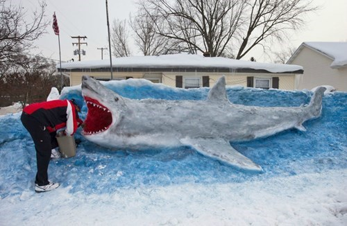 snow man,sharks,winter,snow sculpture