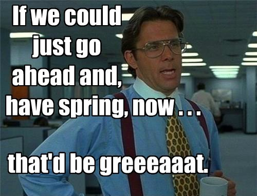 If we could just go ahead and, have spring, that'd be greeeaaat. now . . .