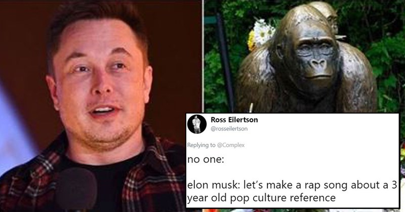 twiiter harambe rap cringe rip harambe twitter reactions emo g records elon musk tesla funny tweets soundcloud jung musk - 8062469