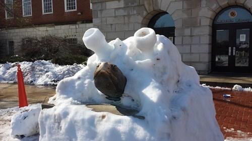 blastoise snow turtles - 8062992896