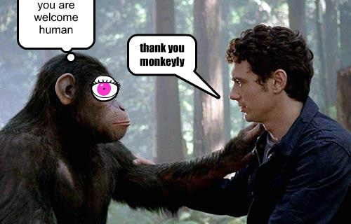 thank you monkeyly you are welcome human
