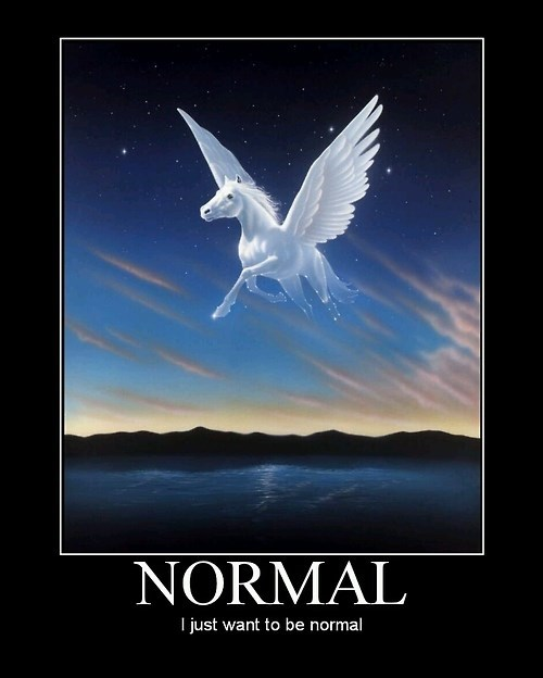 wings pegasus funny horse - 8063347968