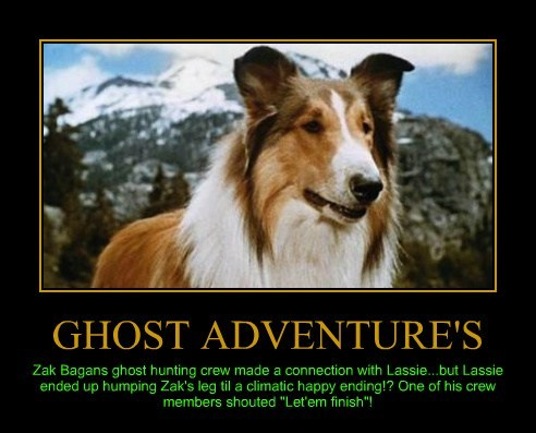 "GHOST ADVENTURE'S Zak Bagans ghost hunting crew made a connection with Lassie...but Lassie ended up humping Zak's leg til a climatic happy ending!? One of his crew members shouted ""Let'em finish""!"