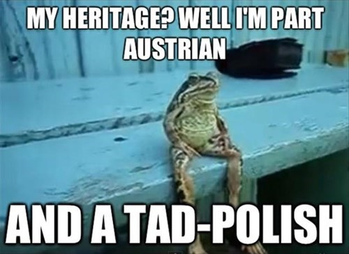 heritage funny frogs - 8063818496