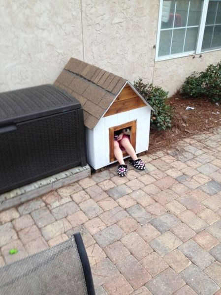 kids puppies friends cute dog house