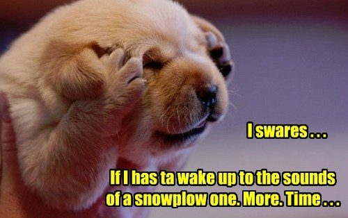 If I has ta wake up to the sounds of a snowplow one. More. Time . . . I swares . . .