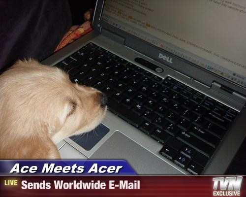 Ace Meets Acer - Sends Worldwide E-Mail