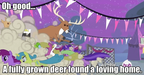 pet adoption,deer,mlp season 4