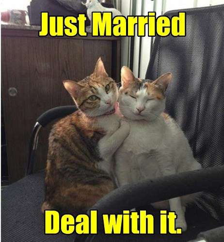 Just Married Deal with it.