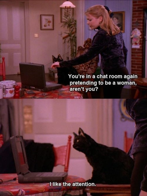 sabrina the teenage witch the internets Cats funny - 8067009280