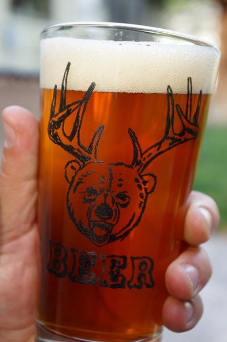 beer bear pint glass funny - 8067552256