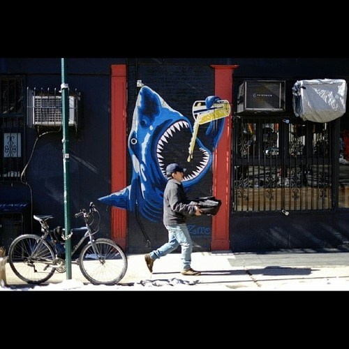 beer awesome funny graffiti shark after 12 g rated - 8068864256