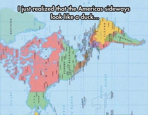amazing ducks geography Maps - 8069111552