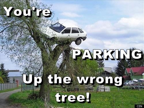 You're PARKING Up the wrong tree!