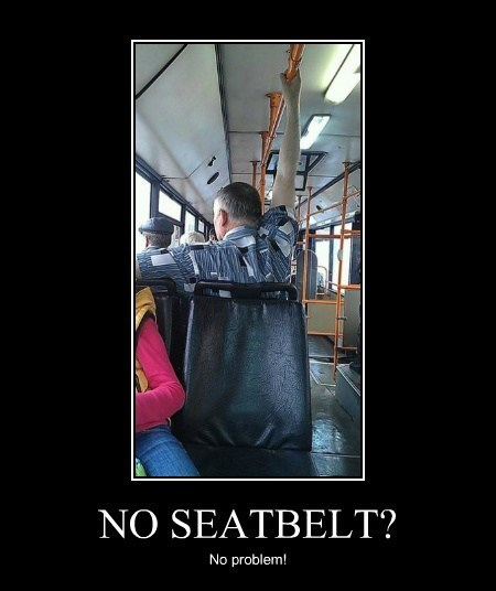 hold on seatbelt funny bus - 8070349824