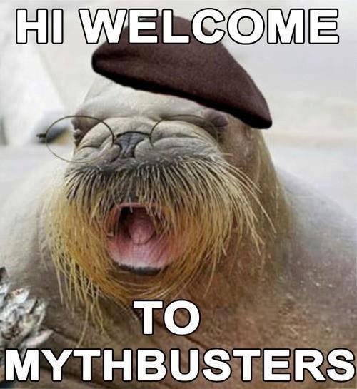 jamie hyneman,mythbusters,walrus,funny