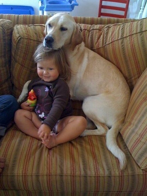 cute dogs kids parenting - 8071883520