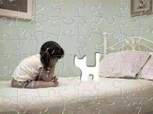 cute,puzzles,little girls,Cats