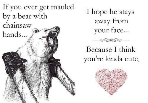 bears,love,funny,weird
