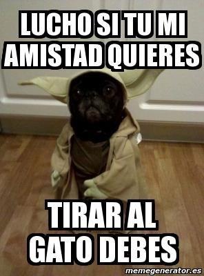 gatos perros Memes animales - 8072374272