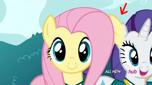 animation error fluttershy - 8072435456