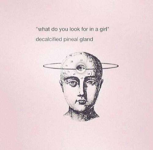 Sexy Ladies wtf pineal gland funny - 8072450560
