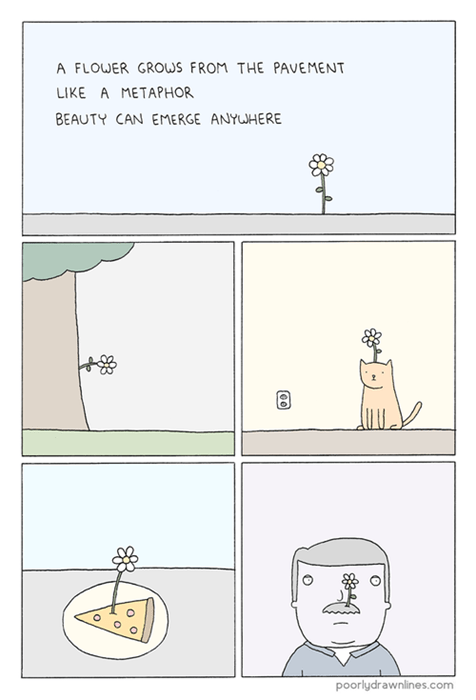 beauty,web comics