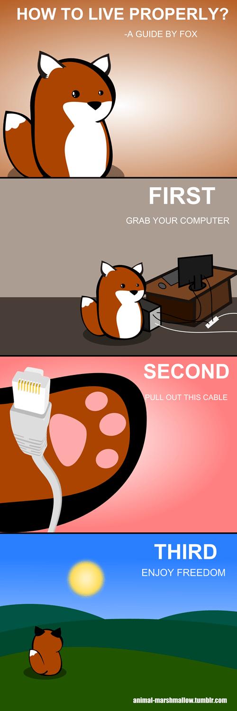 internet web comics animal marshmallow - 8073585920
