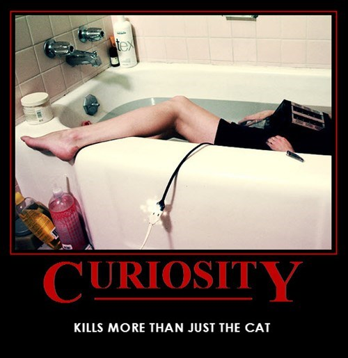 bad idea idiots curiosity funny - 8074084608