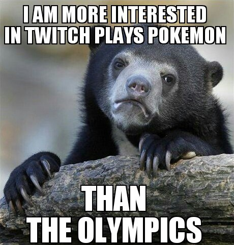 Confession Bear Memes olympics twitch plays pokemon - 8074254592