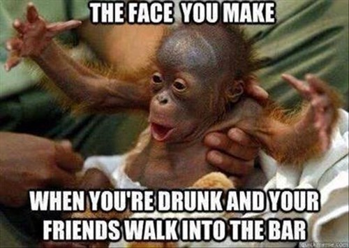 drunk friends apes funny