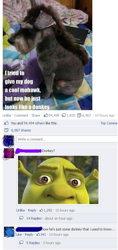 dogs,pets,shrek,failbook,g rated