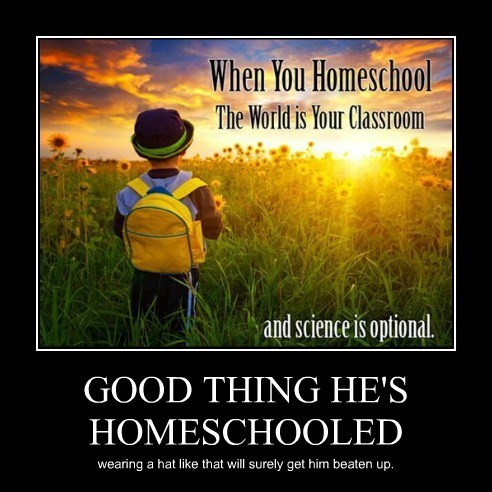 homeschool science idiots funny - 8075620352
