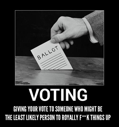 vote idiots funny politics - 8076090624