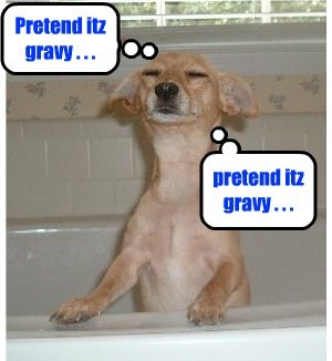 dogs baths gravy cute - 8077334784