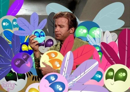 MLP Star Trek parasprite tribbles
