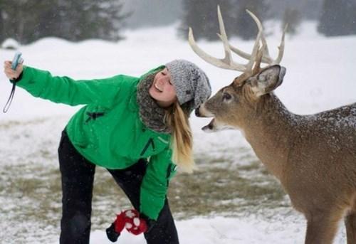 cute deer Photo selfie - 8079815936