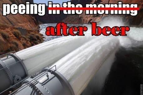 beer seal pee funny - 8080585216
