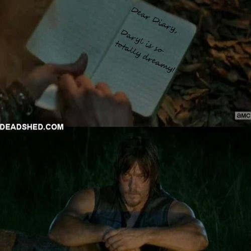 daryl dixon diary The Walking Dead - 8081097216