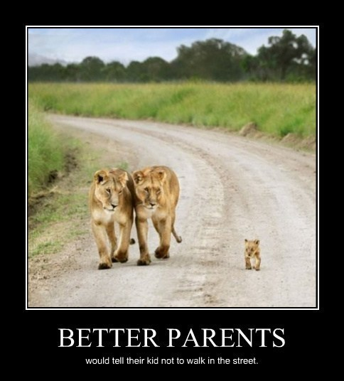 animals kids funny lions parents - 8081846528