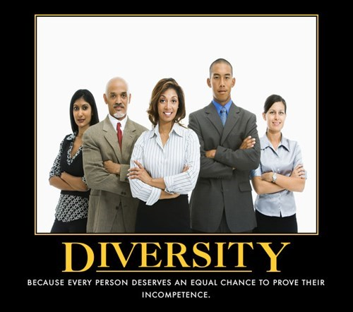 diversity funny incompetence idiots - 8081948416