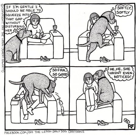 dogs web comics - 8081964032