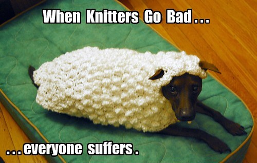 dogs sheep knitting