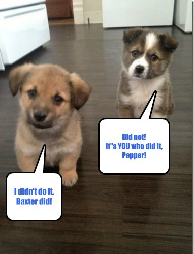 "I didn't do it, Baxter did! Did not! It""s YOU who did it, Pepper!"
