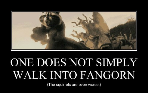 ONE DOES NOT SIMPLY WALK INTO FANGORN