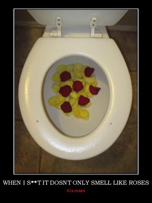 funny poop roses - 8083492352