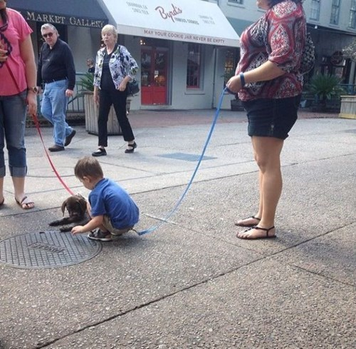 dogs leash kids parenting
