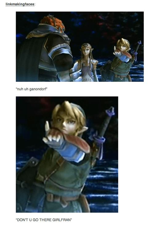 link,legend of zelda,sassy